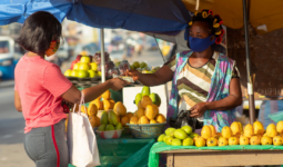 Applying a gender lens to post-Covid economic recoveries: a spotlight on women-led businesses in Africa